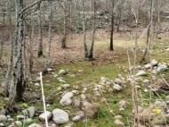 Продается земельный участок в живописном месте. Фото 8