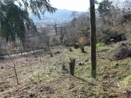 Земельный участок по акционной цене в Батуми Фото 3