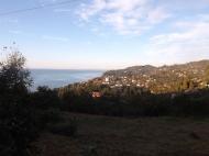 Участок с видом на море в Махинджаури,Грузия. Фото 2