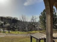 Купить частный дом в курортном районе Кобулети, Грузия. Мандариновый сад, Фруктовый сад. Фото 6
