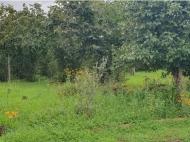 Купить частный дом с земельным участком в пригороде Озургети, Грузия. Фото 2