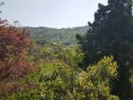 Аренда дома с видом на море и горы в тихом районе. Махинджаури, Аджария, Грузия. Фото 5