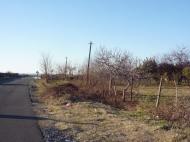 Участок на берегу моря в Батуми. Купить участок на Новом бульваре в Батуми, Грузия. Фото 8