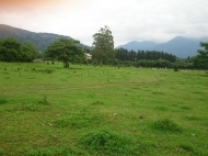 Купить земельный участок в пригороде Батуми,Хелвачаури,Грузия. Фото 3