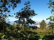 Участок в Махинджаури с видом на море и на город Батуми, Грузия. Фото 6
