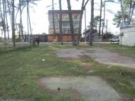 იყიდება მიწის ნაკვეთი ზღვასთან ურეკში. გასაყიდი მიწა ზღვიდან 200 მეტრში. საქართველო. ფოტო 2