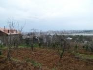 Земельный участок с видом на город Батуми. Фото 3