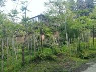Дом с земельным участком в Махинджаури. Купить дом с видом на море в Махинджаури, Аджария, Грузия. Фото 5