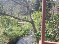 Аренда дома на берегу реки в Махинджаури. Снять дом в аренду на берегу реки, в тихом районе Махинджаури, Грузия. Фото 3