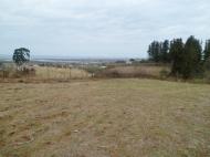 Земельный участок в Батуми с природным родником Фото 4