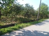 Ground area ( A plot of land ) for sale at the seaside of Batumi Photo 6