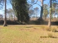 Земельный участок в курортном районе Шекветили, Грузия. Рядом с оживлённой трассой. Выгодно для инвестиций. Фото 1
