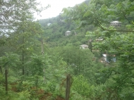 Ground area (A plot of land) for sale in Kvariati, Georgia with view of the sea Photo 3