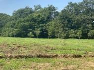 Продается действующий сельскохозяйственный комплекс. Грузия. Фото 9