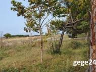 Земельный участок у моря в Чакви, Грузия. Фото 2