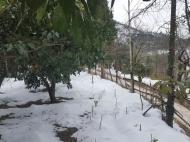 Земельный участок для дачи в Капрешуми. Земельные участки в Капрешуми, Аджария, Грузия. Фото 3