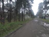 Земельный участок в Шекветили Фото 2