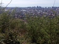 Участок с видом на море и на город Батуми,Грузия. Фото 4