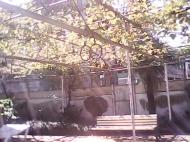 Продается дом в Батуми с баней и бассейном. Купить дом в Батуми. Фото 42