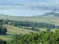 Продается земельный участок у озера Базалети, Грузия. Фото 7