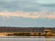 Частный дом для отдыха на озере Палеостоми. Купить дом с участком у озера Палеостоми, Грузия. Фото 14