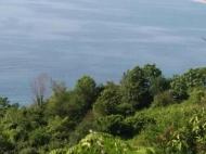 Участок с видом на море в Квариати. Купить участок с видом на море в Грузии. Фото 5