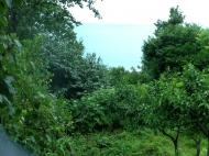 Земельный участок в курортной зоне Квариати. Аджария Грузия Фото 1