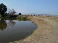 Земельный участок с озером в Марнеули, Грузия. Готовый бизнес. Фото 7
