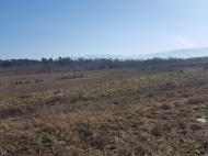 Земельный участок в курортном районе Шекветили, Грузия. Фото 3