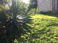 Частный дом в пригороде Батуми. Частный дом с земельным участком в пригороде Батуми, Грузия. Фото 4