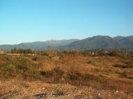 Земельный участок на пляже Черного моря в Кобулети. Участок на пляже Черного моря в Кобулети, Грузия. Фото 5