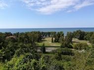 იყიდება კერძო სახლი ზღვისა და მთების ხედით ციხისძირში. ქობულეთი. საქართ[ელო. ფოტო 1