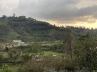 იყიდება სასწრაფოდ განვადებით მიწა ბათუმიდან 5 კილომეტრში, აჭარა, საქართველო. ფოტო 7