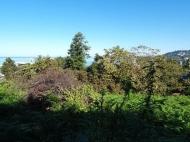 В Махинджаури продается участок с видом на море, от моря 500 метров. Фото 3