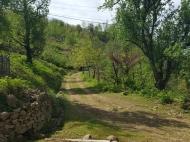 Источник минеральной воды в экологически чистом районе. Кеда, Аджария, Грузия. Фото 2