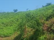 Земельный участок в Капрешуми, Батуми, Грузия. Фото 5