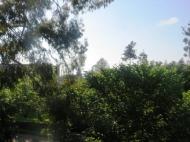 Купить участок с домом у моря в Махинджаури до моря 100 метров Фото 3
