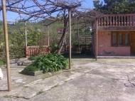 Дом с мандариновым садом в Батуми Фото 13