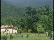 Земельный участок на продажу в Кварели, Кахетия, Грузия. Фото 4