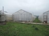 Дом с земельным участком и с теплицами для разведения роз в Барцхане, Батуми. Действуюший бизнес. Тепличное хозяйство в Батуми. Фото 2