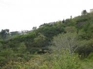 Участок в Батуми. Купить земельный участок в Батуми,Грузия. Фото 1