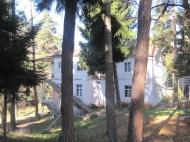 Земельный участок с коттеджами  в сосновом лесу в курортном районе в Борджоми, Грузия. Фото 7