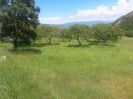 Купить земельный участок в пригороде Тбилиси. Фото 2