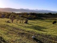 Продается земельный участок у озера Базалети, Грузия. Фото 8