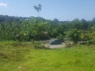 Земельный участок в Капрешуми, Батуми, Грузия. Фото 3