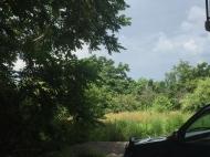 Продается земельный участок в Кобулети, Аджария, Грузия Фото 5