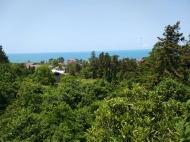 Срочно продаётся участок с прекрасным видом на море!!!! Фото 7