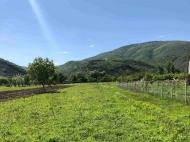 Продается земельный участок в Натахтари, Грузия. Фото 1