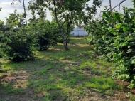 Продается частный дом с земельным участком в Зугдиди, Грузия. Фото 15