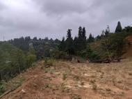 Земельный участок с видом на море в Цихисдзири. Купить земельный участок в Грузии. Фото 12